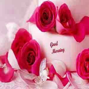 GUD morning - Good Mouring - ShareChat