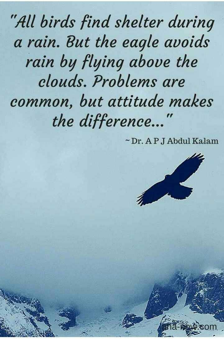 life goals - All birds find shelter during a rain . But the eagle avoids rain by flying above the clouds . Problems are common , but attitude makes the difference . . . ~ Dr . APJ Abdul Kalam na how som - ShareChat