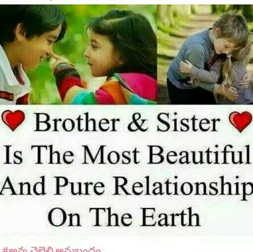 PAK vs AUS - Brother & Sister Is The Most Beautiful And Pure Relationship On The Earth Hans 3852 - ShareChat