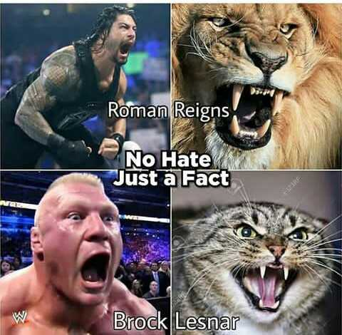 🥊WWE - Roman Reigns No Hate Just a Fact W Brock Lesnar - ShareChat