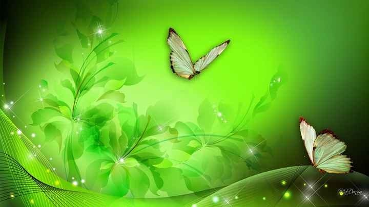butterfly - 1 Na on - ShareChat
