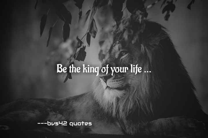 ---bvs42 edits - Be the king of your life . . . - - - bvs42 quotes - ShareChat