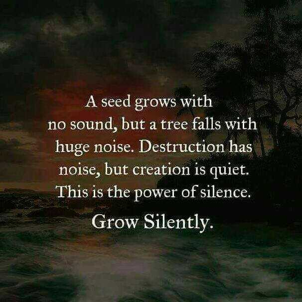 my life my style - A seed grows with no sound , but a tree falls with huge noise . Destruction has noise , but creation is quiet . This is the power of silence . Grow Silently . - ShareChat