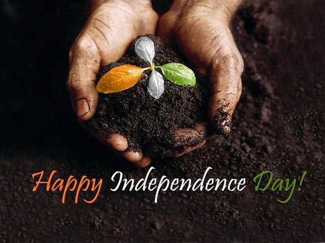 Independence day status - Happy Independence y - ShareChat