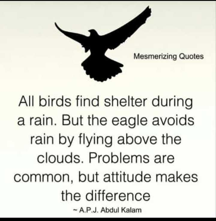 ✍️ જીવન કોટ્સ - Mesmerizing Quotes All birds find shelter during a rain . But the eagle avoids rain by flying above the clouds . Problems are common , but attitude makes the difference - A . P . J . Abdul Kalam - ShareChat