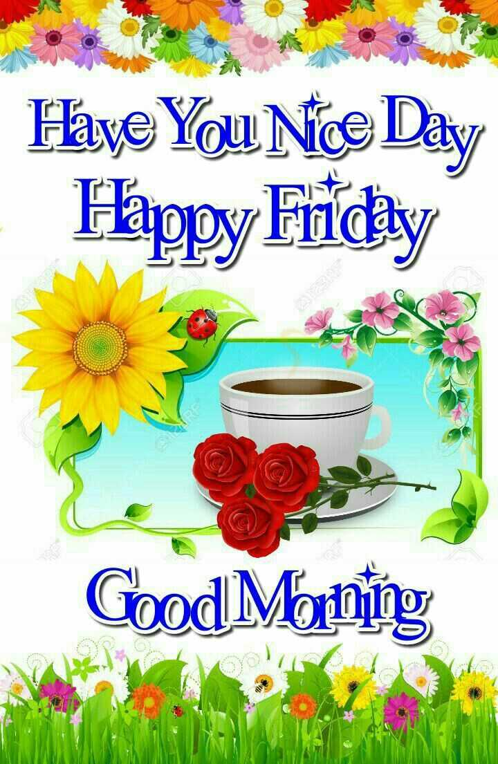 🌞Good Morning🌞 - Have You Nice Day Happy Friday Good Morning - ShareChat