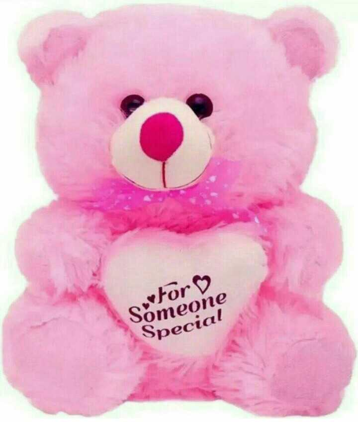 teddy bears - For ♡ Someone Special - ShareChat