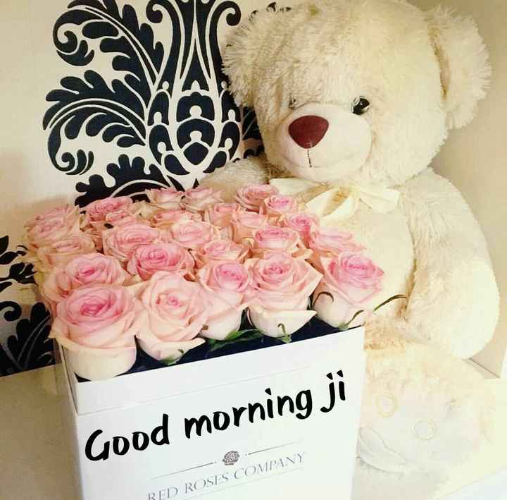 karan deep - Good morning ji RED ROSES COMPANY - ShareChat