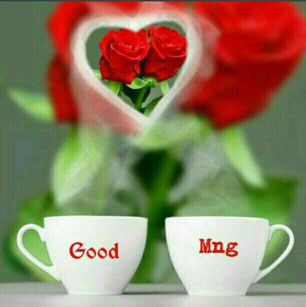 have a nice day...✍🌷🌷 - Good Mng - ShareChat