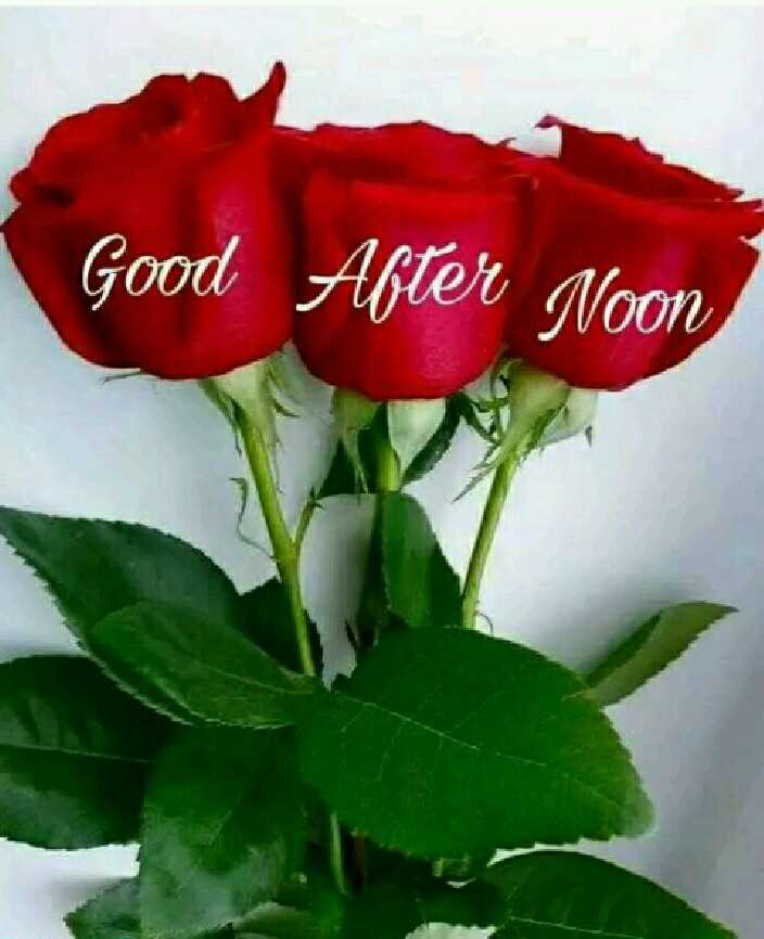🕛 शुभ दोपहर - Good After Noon - ShareChat