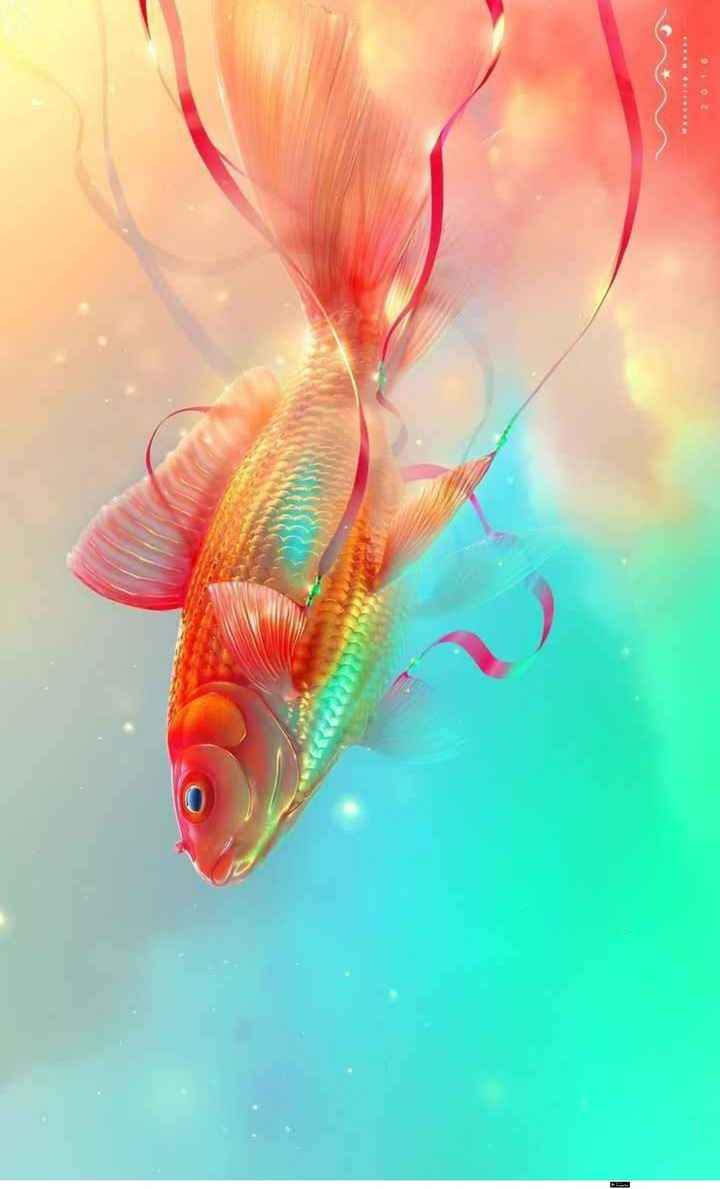 Fish - 2016 - ShareChat