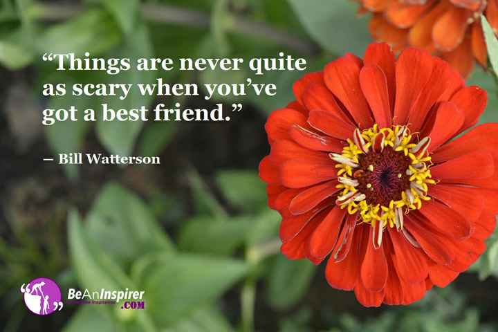 "Friendship Quotes - Things are never quite as scary when you ' ve got a best friend . "" – Bill Watterson GA BeAnInspirer at the Inspiration COM - ShareChat"