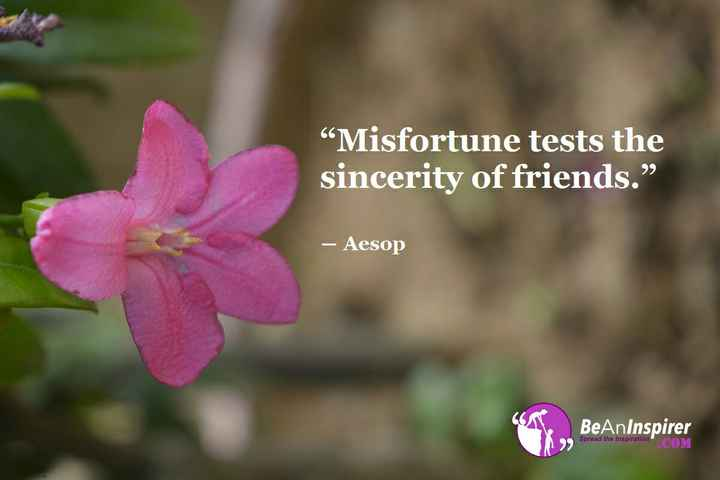 "Friendship Quotes - Misfortune tests the sincerity of friends . "" - Aesop BeAnInspirer . COM - ShareChat"