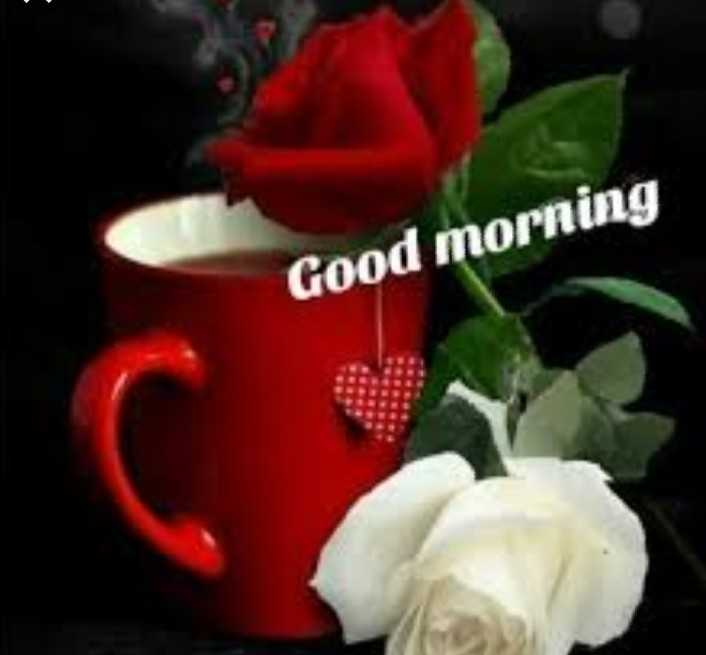 GOOD MORNING FRIENDS - Good morning - ShareChat