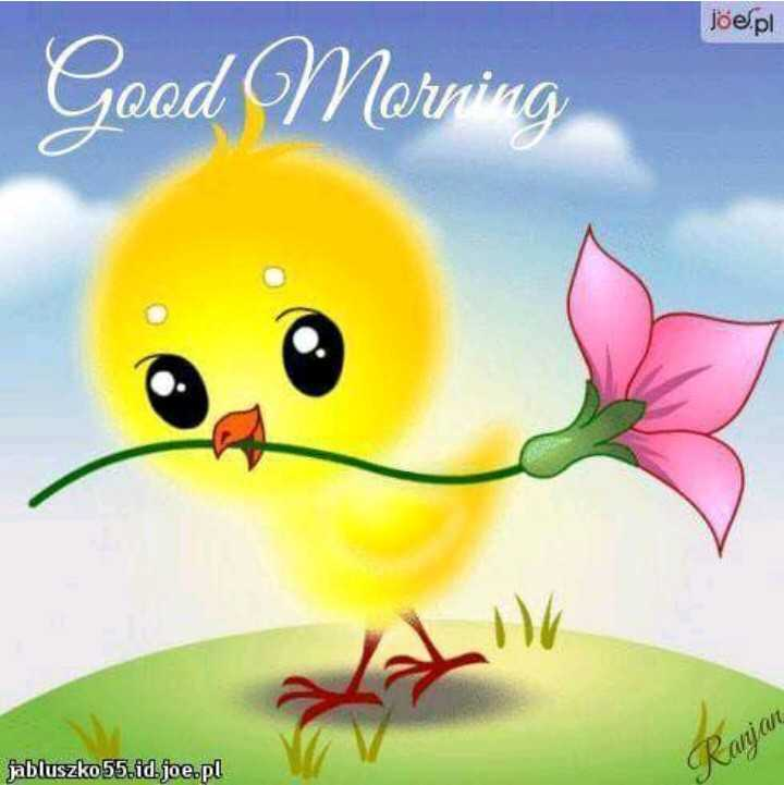 🌞Good Morning🌞 - Joe . pl Good Morning jabluszko55 . id . joe . pl Ranjan  - ShareChat