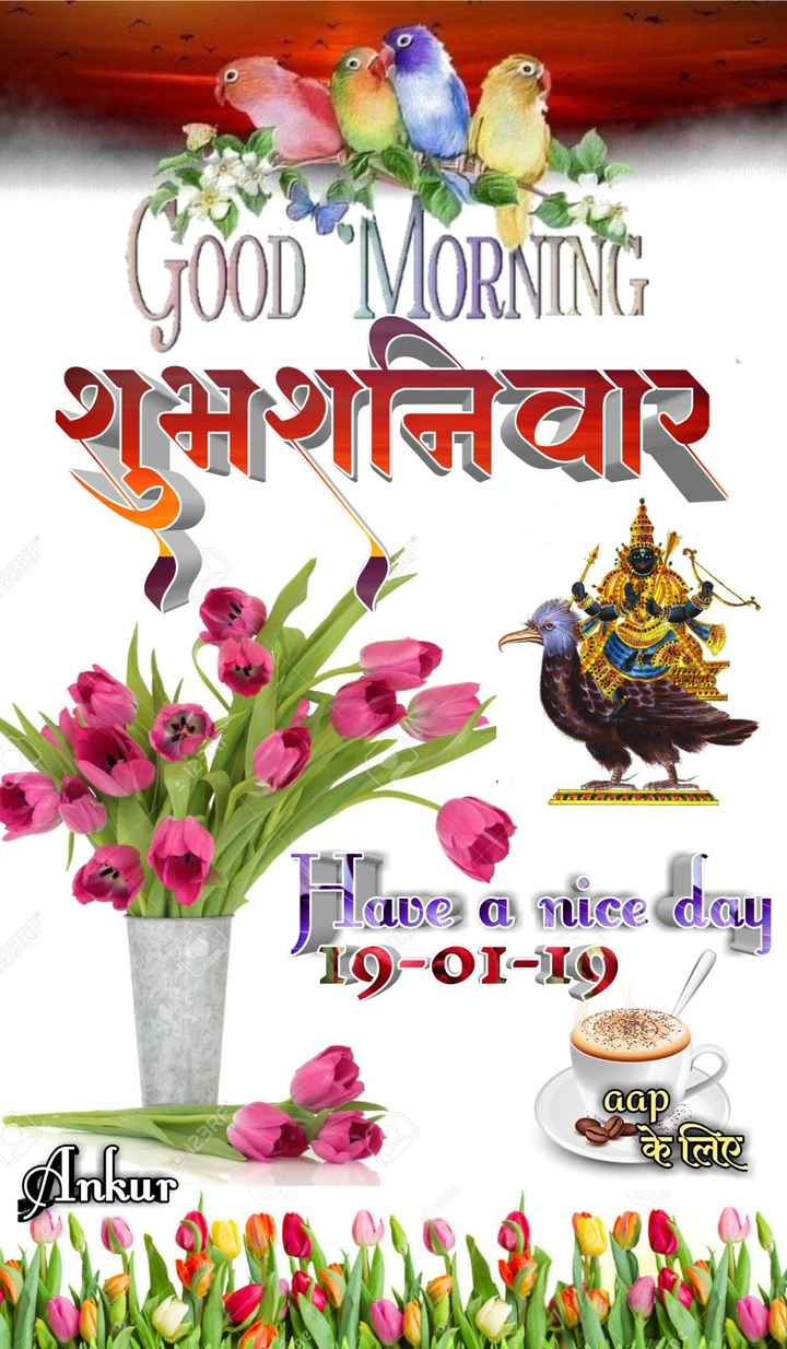 🌞Good Morning🌞 - GooD MORNING THIHAR Have a nice day 19 - 01 - 19 aap 123R Ankur - ShareChat