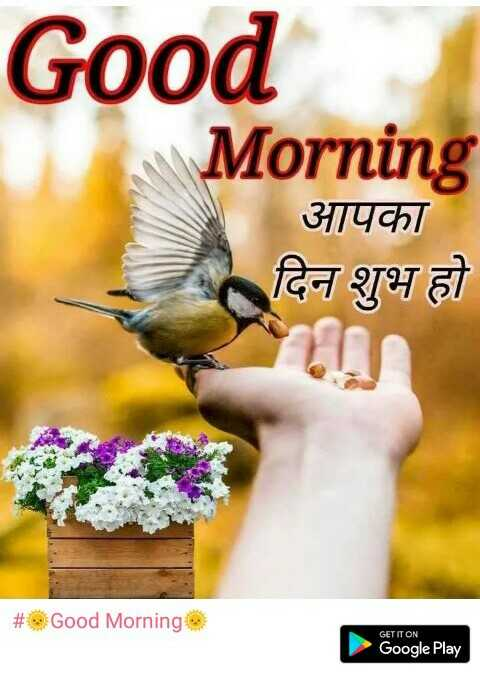 🌞Good Morning🌞 - Good Morning आपका दिन शुभ हो | # Good Morning GET IT ON Google Play - ShareChat