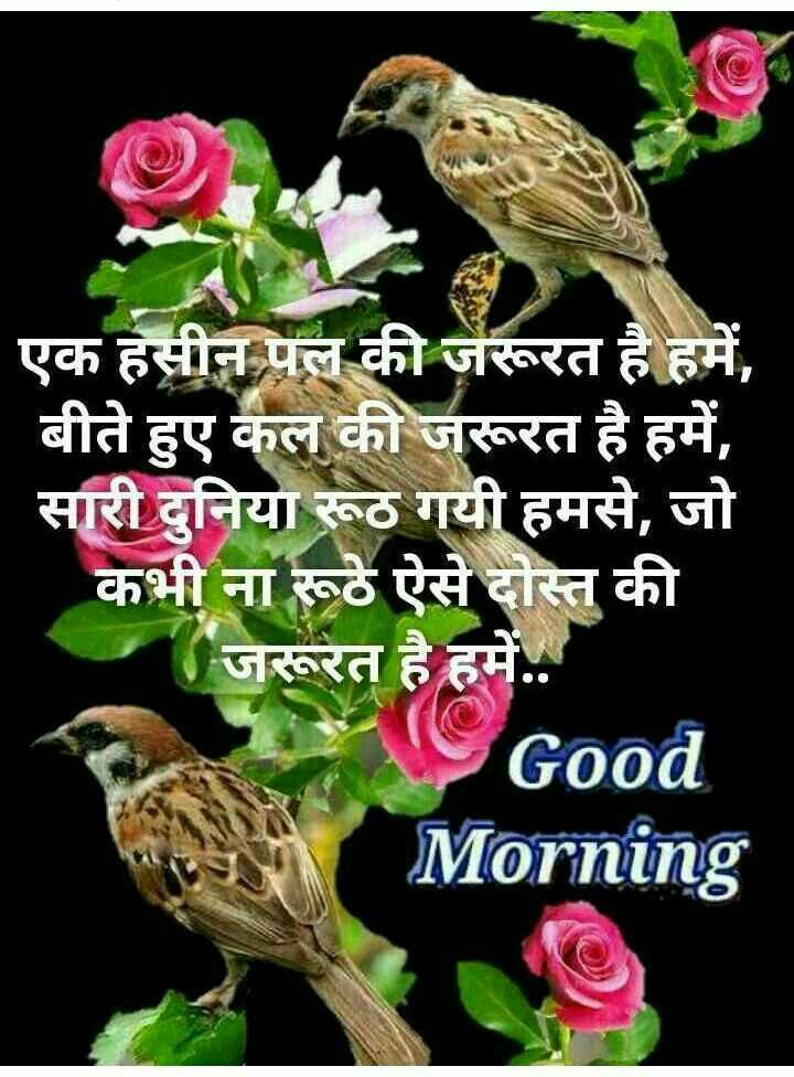 🌞Good Morning🌞 - ShareChat
