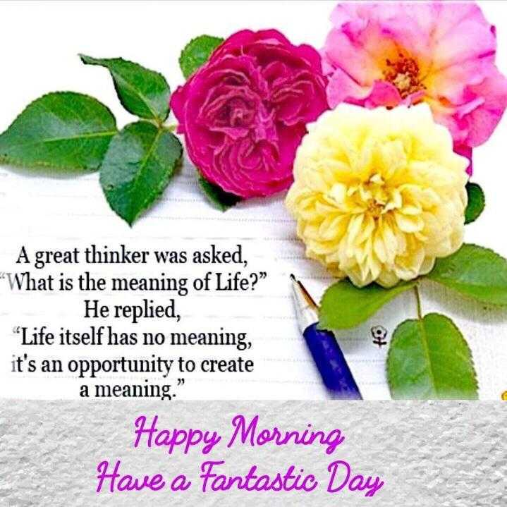 🌞Good Morning🌞 - A great thinker was asked , What is the meaning of Life ? He replied , Life itself has no meaning , it ' s an opportunity to create a meaning . Happy Morning Have a Fantastic Day - ShareChat