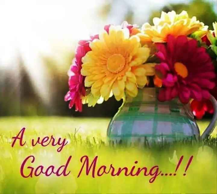 🌞Good Morning🌞 - A very same Good Morning . . . ! ! - ShareChat