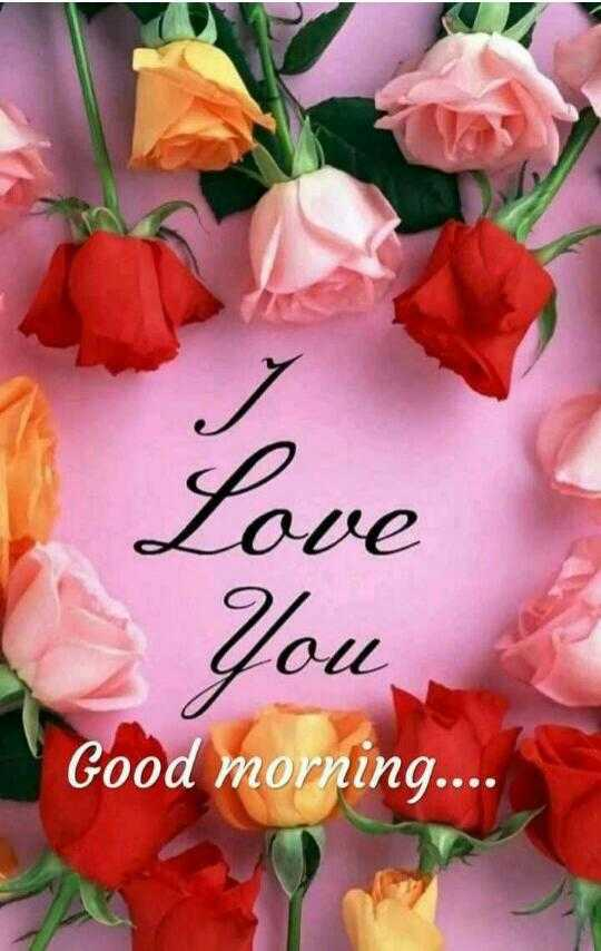 🌞Good Morning🌞 - Love You , Good morning . . . . - ShareChat