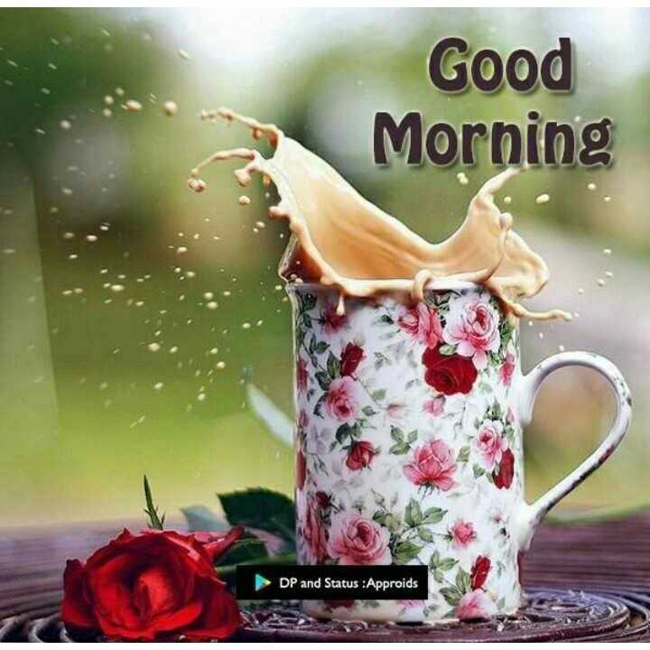 🌞Good Morning🌞 - Good Morning DP and Status : Approids - ShareChat