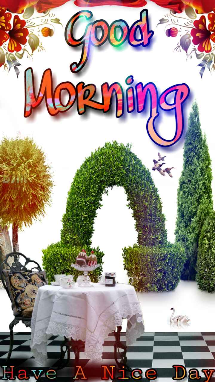 NV फनी फोटोज़ - Morning W INT Have A Nice Day - ShareChat