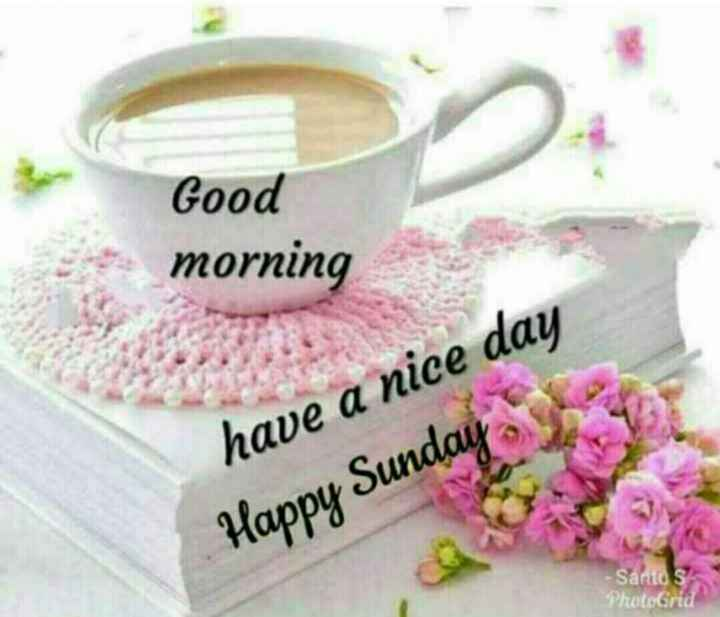 Sunday Thoughts - Good - morning have a nice day Happy Sunday Santos PhotoGrid - ShareChat
