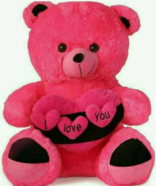Teddy Lover - You love - ShareChat