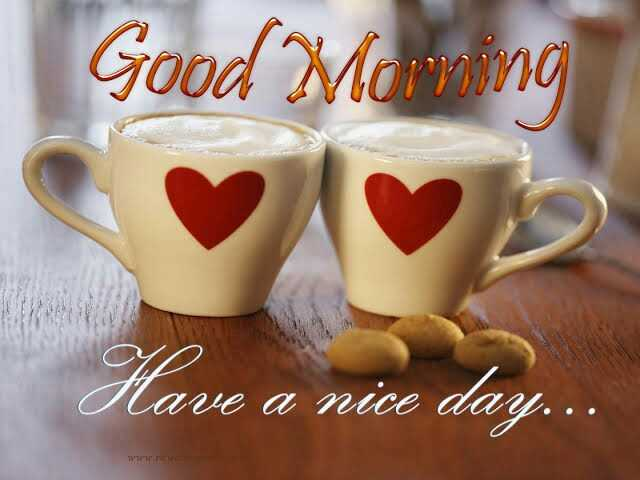 My First Post - Good Morning Have a nice day . . . - ShareChat