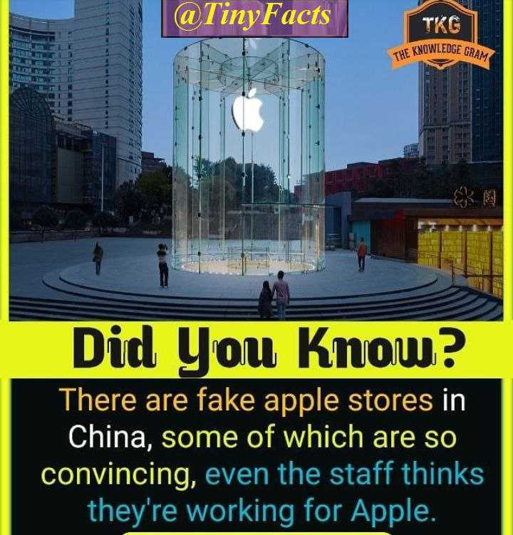 रोचक तथ्य - @ Tiny Facts TKG THE KNOWLEDGE GRO Did You Know ? There are fake apple stores in China , some of which are so convincing , even the staff thinks they ' re working for Apple . - ShareChat