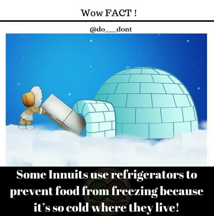फैक्टस एव जानकारी - Wow FACT ! @ do _ _ dont Some Innuits use refrigerators to prevent food from freezing because it ' s so cold where they live ! - ShareChat