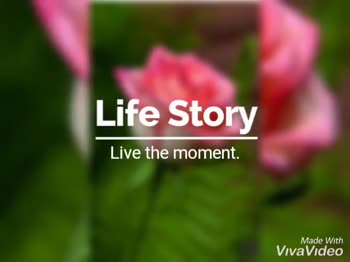 rose day 🌹🌹 - Made With VivaVideo Presented By VivaVideo Made With VivaVideo - ShareChat