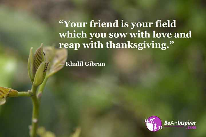 "friendship quotes - "" Your friend is your field which you sow with love and reap with thanksgiving . "" - Khalil Gibran BeAnInspirer . COM Soroach - ShareChat"