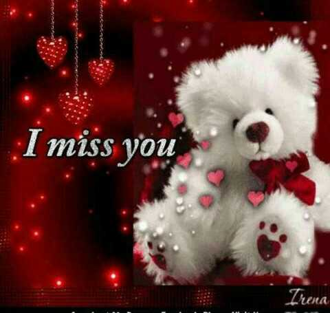 teddy bears - I miss you Thera - ShareChat
