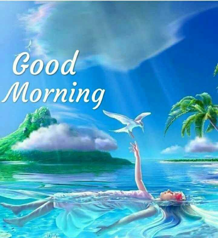 good morning frnds - биилои po0 - ShareChat