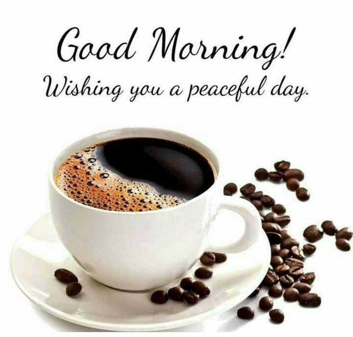 वीरेन्द्र सहवाग बर्थडे - Good Morning ! Wishing you a peaceful day . - ShareChat