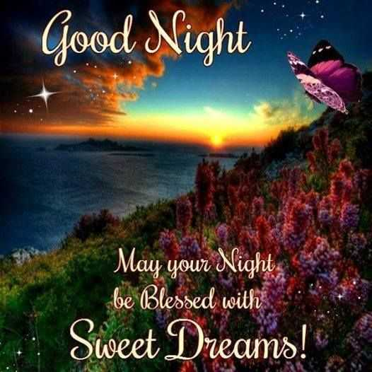 😍 awww... 🥰😘❤️ - Good Night May your Night be Blessed with Sweet Dreams ! - ShareChat