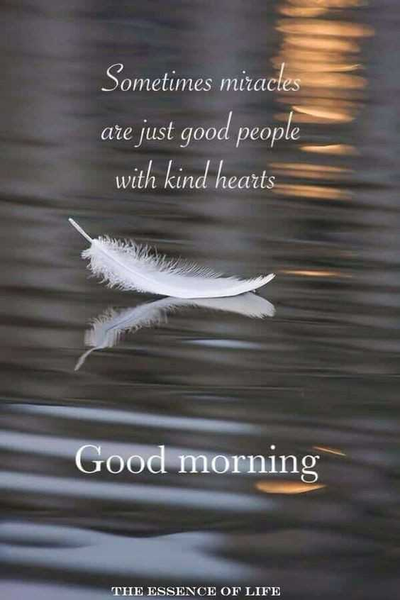 👌सुविचार - Sometimes miracles are just good people with kind hearts Good morning THE ESSENCE OF LIFE - ShareChat