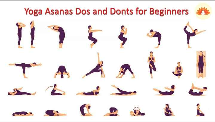 yoga - Yoga Asanas Dos and Donts for Beginners ۲ و ۶ و ۶۶۹ ي م م م م ۳ ست مد ت غ كده ا ن . و C - ShareChat