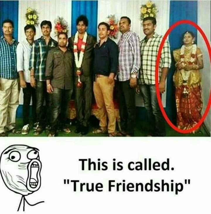 NV फनी फोटोज़ - This is called . True Friendship - ShareChat