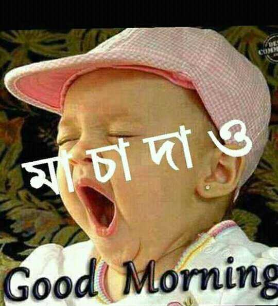 🌞সুপ্রভাত - | মচা দা ও Good Morning - ShareChat