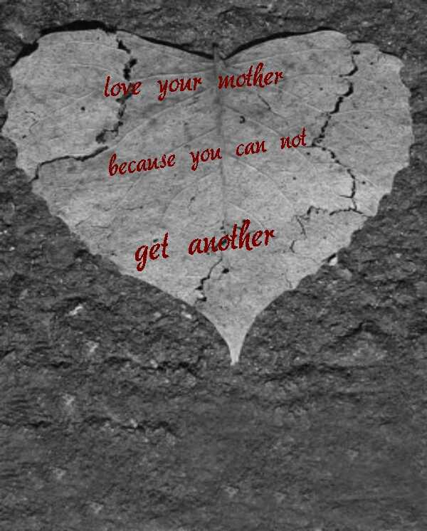 happy birthday - love your mother because you can not get aněther - ShareChat
