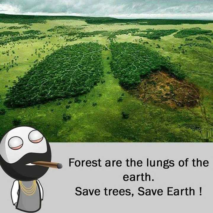 సేవ్ ట్రీస్🙏🙏 - Forest are the lungs of the earth . Save trees , Save Earth ! - ShareChat