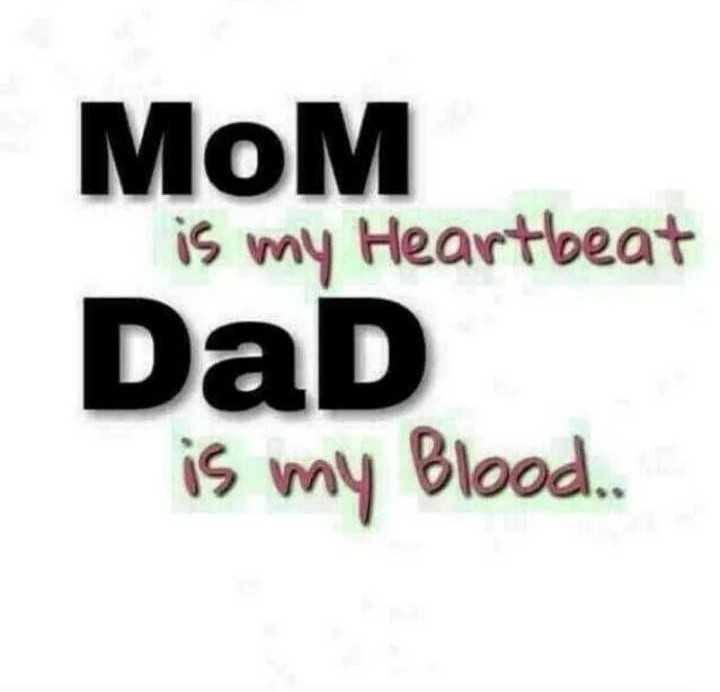 amma appa - MoM is my Heartbeat Dad is my Blood . - ShareChat