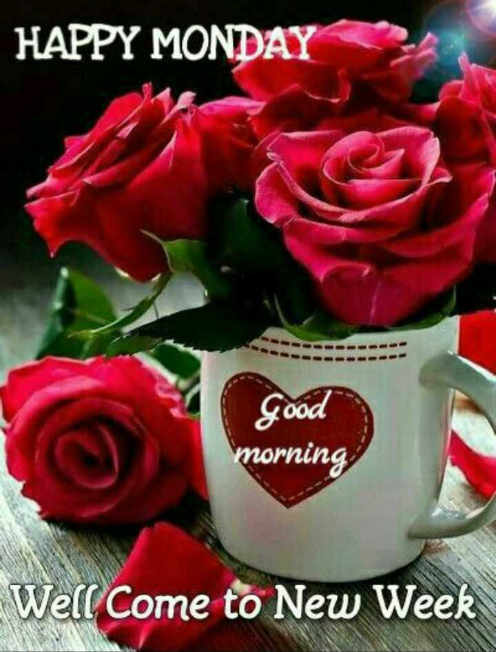 good morning - HAPPY MONDAY good morning Well Come to New Week - ShareChat