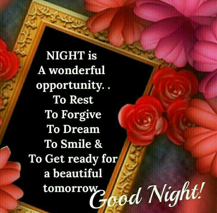 good night 🙀 - NIGHT is A wonderful opportunity . . To Rest To Forgive To Dream To Smile & To Get ready for a beautiful tomorrow zood Night ! - ShareChat