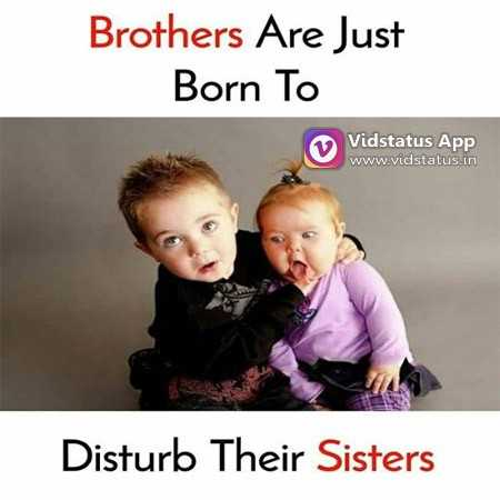 😁হাস্য কৌতুক - Brothers Are Just Born To Vidstatus App www . vidstatus . in Disturb Their Sisters - ShareChat