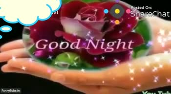 🌙शुभरात्रि - Posted On : Sharechat NIGHT FunnyTube . in Posted On : Sharechat Good Nigrute FunnyTube . in - ShareChat