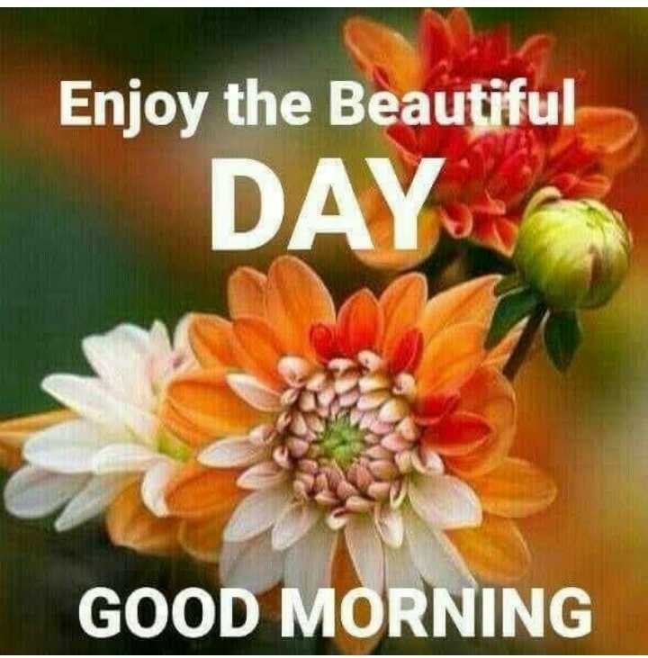 সুপ্রভাত - Enjoy the Beautiful DAY GOOD MORNING - ShareChat
